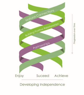 Developing Independence Graphic